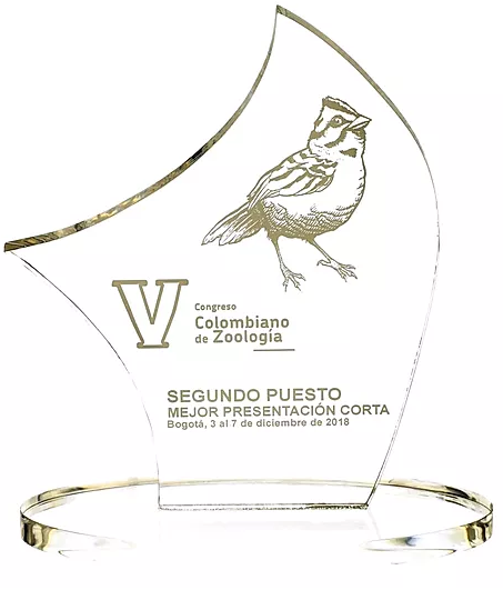Imagen premio congreso de Geología